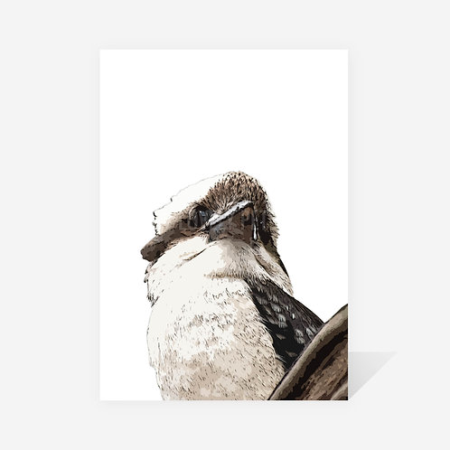 Kookaburra / Dianne Print