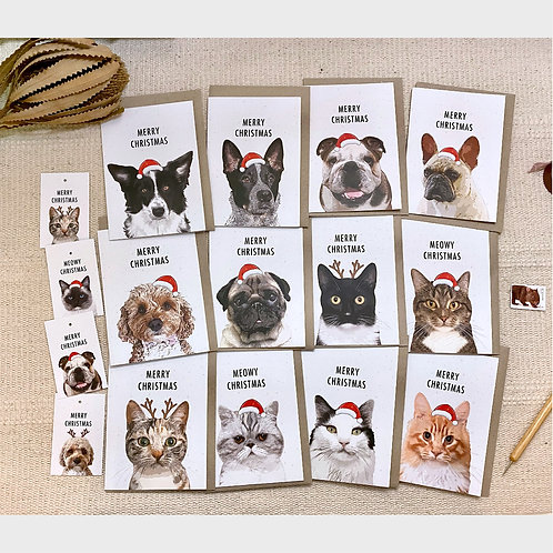 Pack of 12 Mixed Pet Lover Christmas Cards Plus Bonus 4 Christmas Gift Tags
