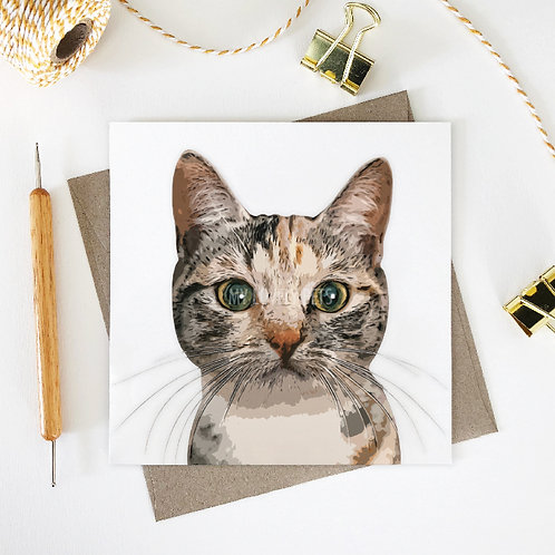 Pixie / Domestic Shorthair Cat Greeting Card