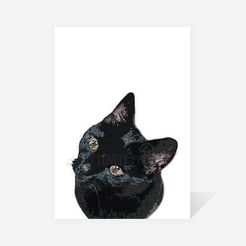 Black Cat / Merlin Print
