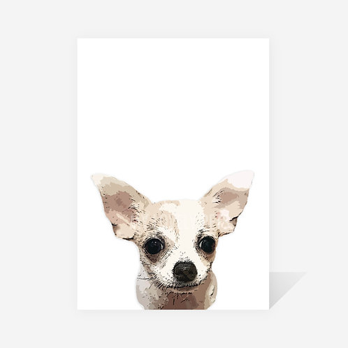 Chihuahua / Digger Print