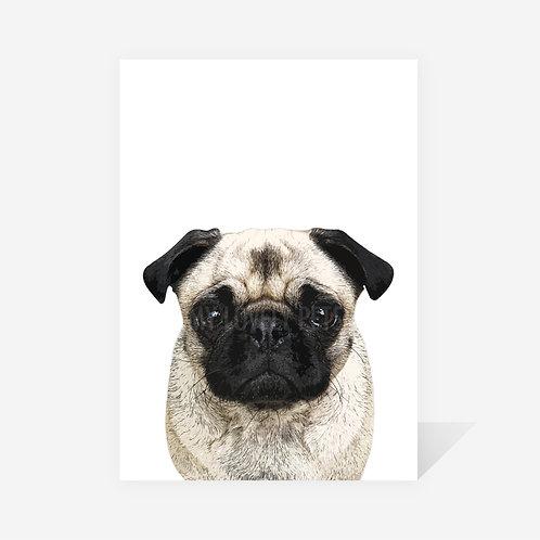 Pug / Aria Print