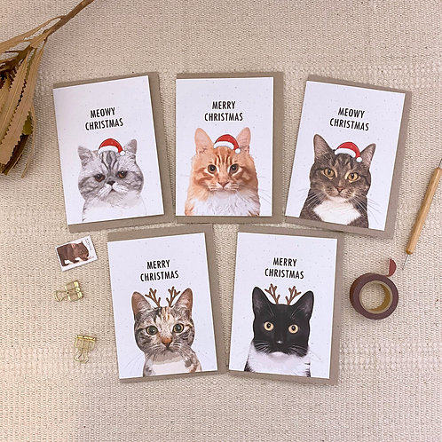 Cat, Pack of 5 Mixed Cat Christmas Cards, Cat Lovers