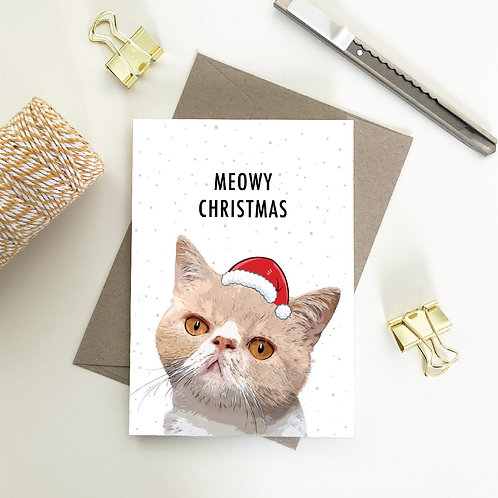 Exotic Shorthair Christmas Card