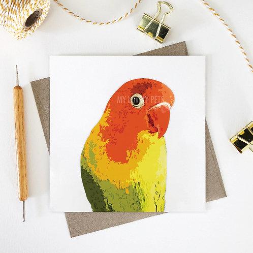Duncan / Lovebird Greeting Card