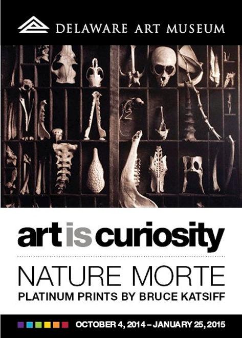 nature_morte_front copy.jpg