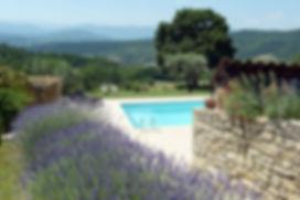Lavenders & the pool.JPG