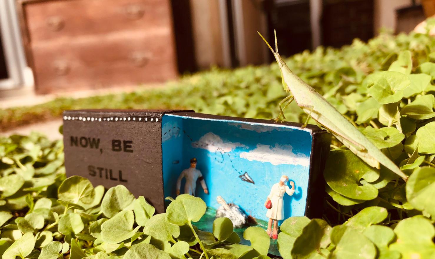 Grasshopper photo-bomb in Okayama City, Okayama Prefecture, Japan