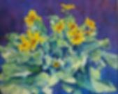 Balsam Flowers 1.jpg