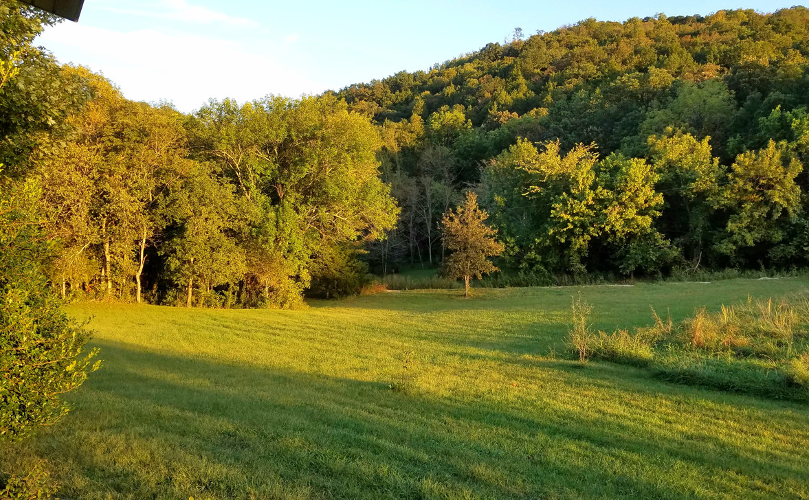 sept 23 2019 neighbords yard pic sunset.