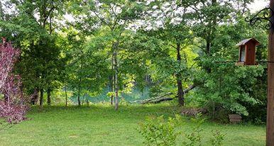 back porch pic river.jpg