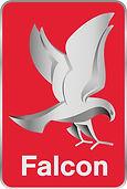 Falcon 2021 logo.jpg