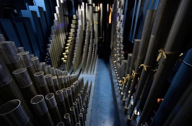inside the organ by dennis nett.jpg