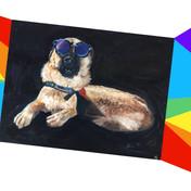 remy + rainbow