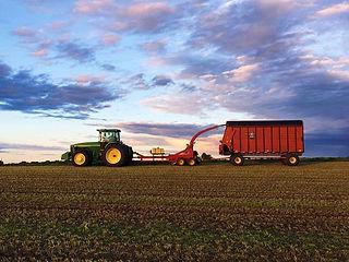 Contract Farming.jpg