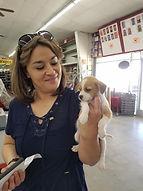 puppy adoption 3.jpg