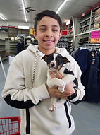 Puppy 23.jpg