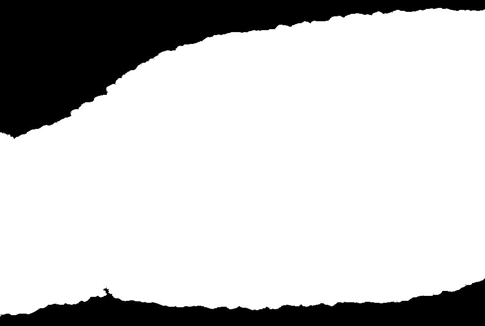 白背景.png