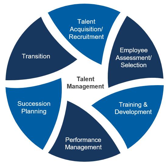 Talent Management.PNG