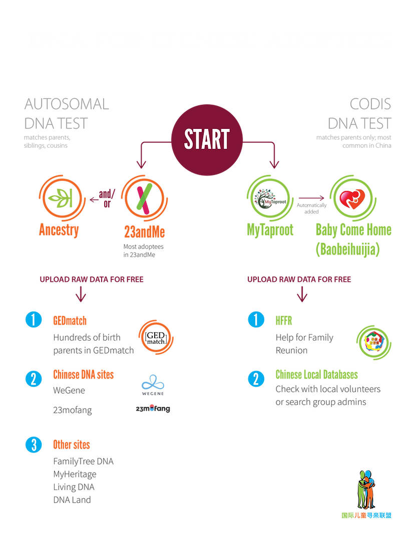 ICSA_DNA Chart_2021-02-13_WEB_Website Ch