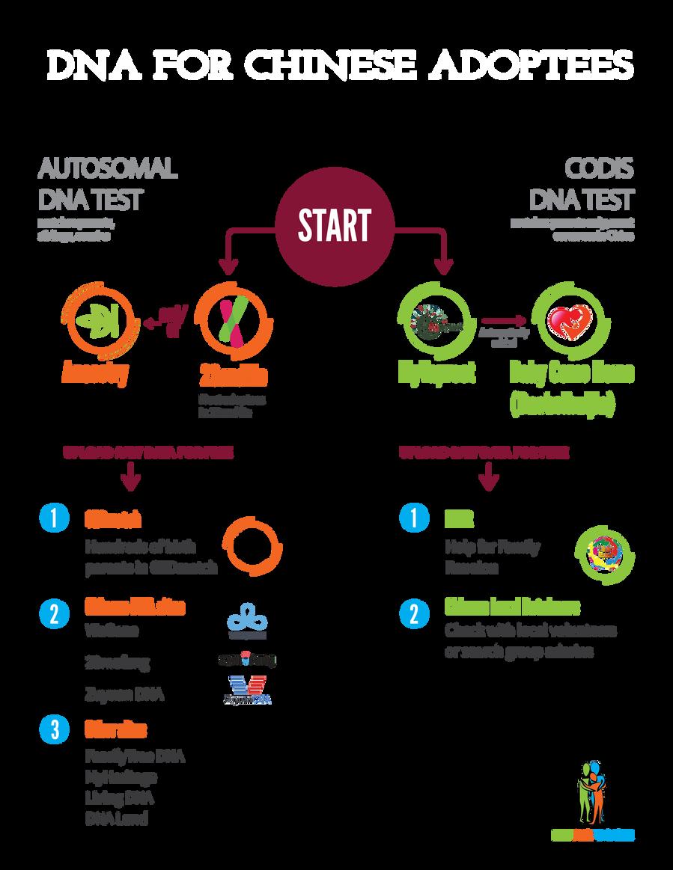 ICSA_DNA Chart_THISONE-06.png