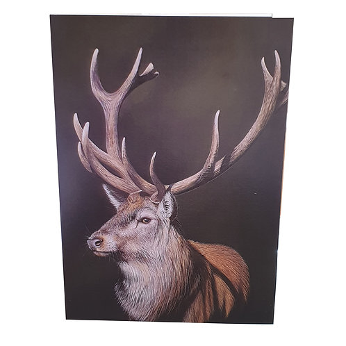 Stag - pack of 6 cards