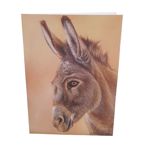 Donkey - pack of 6 cards