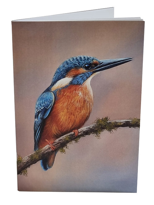 Pack of two Kingfisher Notebooks