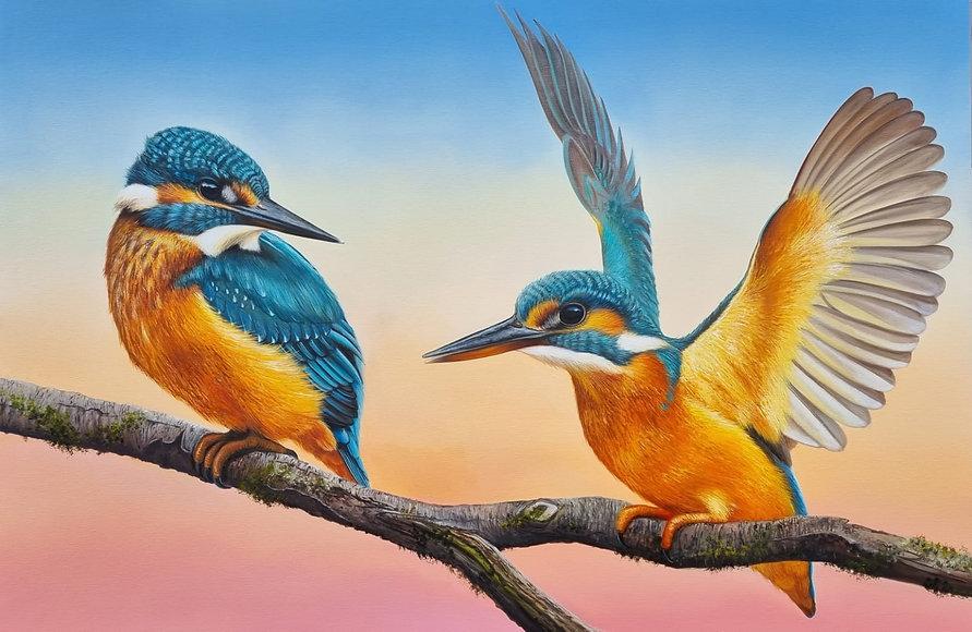 BIGkingfishers.jpeg
