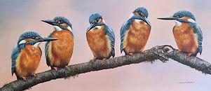 kingfishers.jpeg