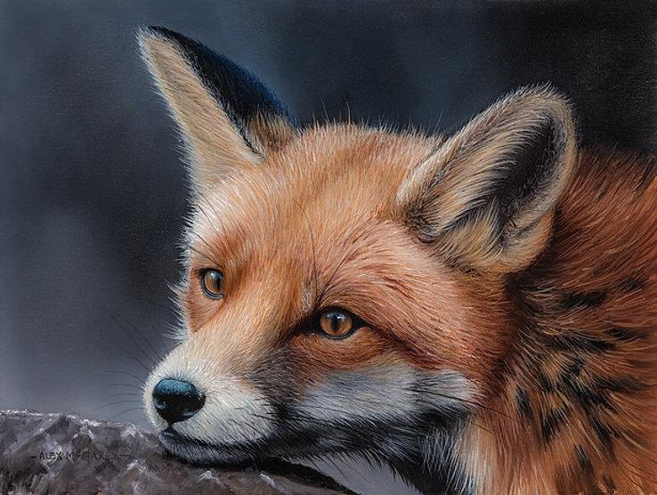 foxrest_edited.jpg