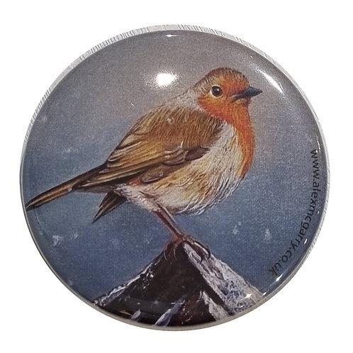 Pocket Mirror - Robin