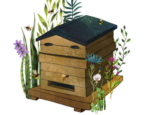 Parrainez des abeilles avec PasBête !
