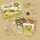 Thumbnail: Kit d'élevage Camponotus nicobarensis