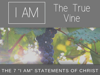"The 7 ""I Am"" Statements of Christ: I Am the True Vine"