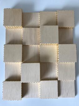 Percevejos sobre madeira 40x32cm 2017