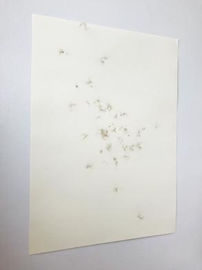 Estalinhos sobre papel canson 42x60cm 2018