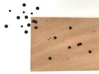 Nanquim, adesivos e alfinetes sobre madeira e parede 42 x 60cm 2017