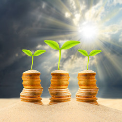 bigstock-Money-growing-from-the-desert--67860355.jpg