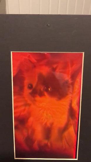 Vintage Kitten Hologram early 1990's