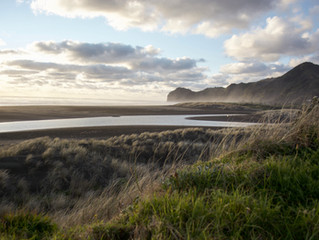 Best Surf Destination New Zealand, Piha Beach