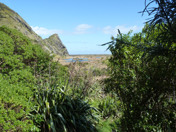 The Nature of the Waitakere Ranges