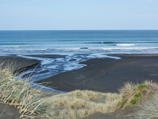 Piha Surf Academy Lessons - November