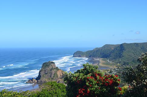 Piha Beach, Lion Rock, Surf, Auckland