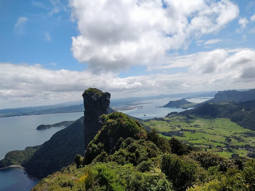 Te Whara