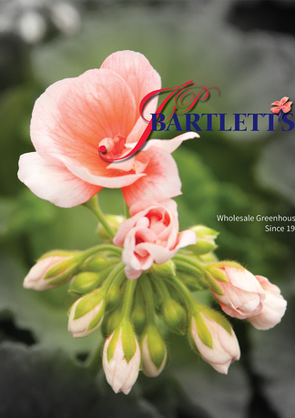 Updated cover design for the '21 JP Bartlett's catalog
