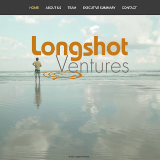 Longshot Ventures is an early-stage incubator that supports talented entrepreneurs through product development, management consulting, and seed funding.