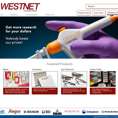 Westnet, Inc.  previous site home page