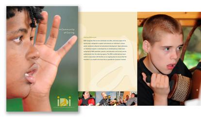 IDDI brochure