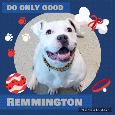 Remmington